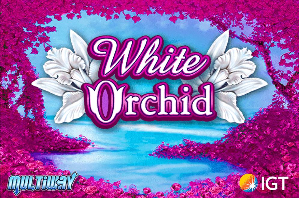 slot gratis white orchid
