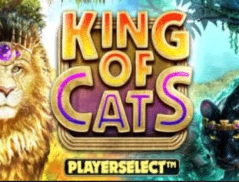 slot king of cats gratis